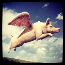 Flying Pigs and Brazil Sale Leaseback Real Estate Investment, Is There a Connection?